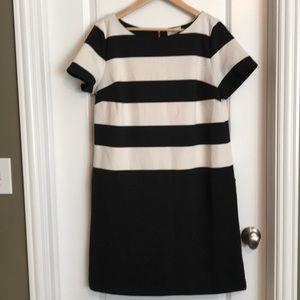 Loft striped shift dress - 12
